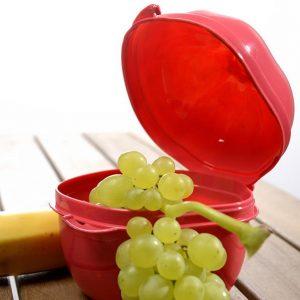 Kuti Ushqimi Ne Forme Shege Titiz Plastik AP-9167